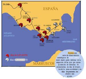 lugares de observatorio de aves en el estrecho de gibraltar