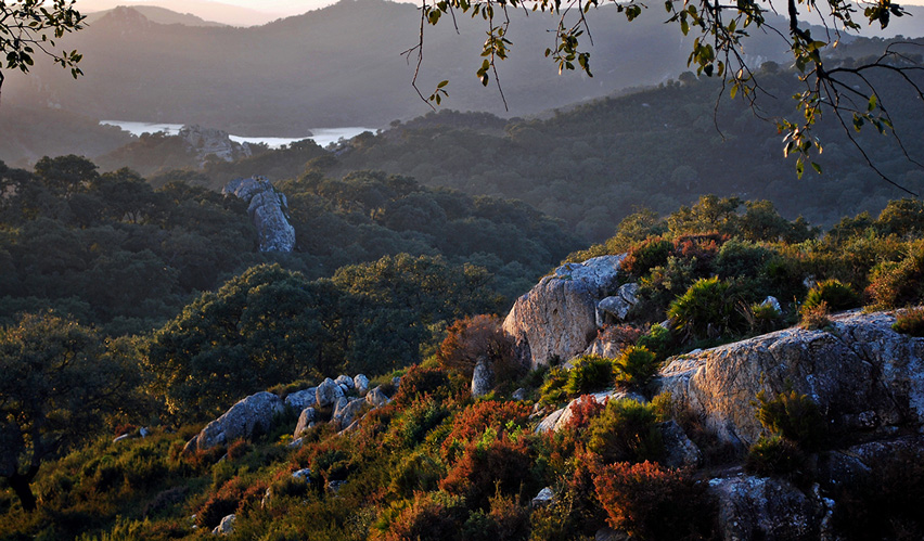 turismo rural en tarifa